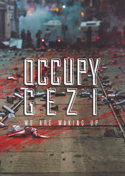 occupy_gezi_street