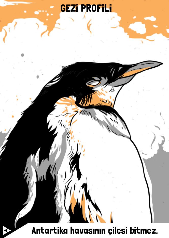 berkay_daglar_penguin